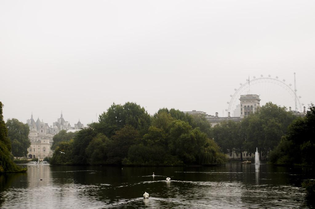 londyn8